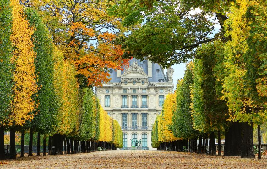 paris-jardin-louvre_guide-rencontre-locale.fr